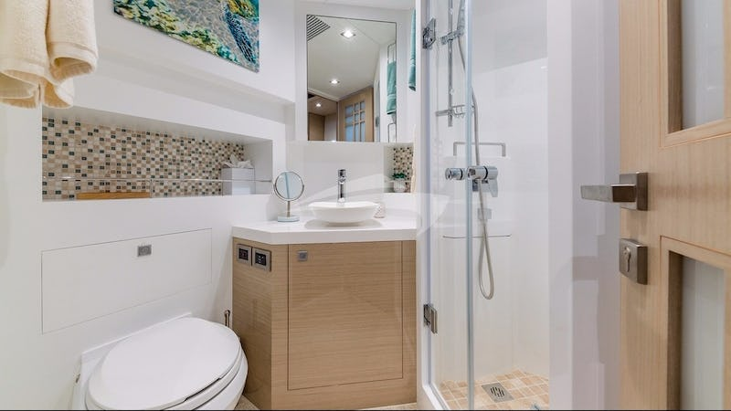 Twin suite head and shower