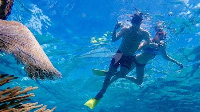 Great snorkeling too