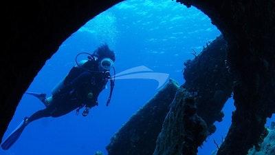 Diving has always been a huge part of Cuan Law