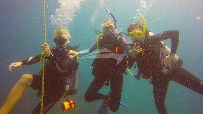 Enjoy the diving