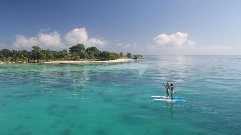 DREAMING ON :: Paddleboarding