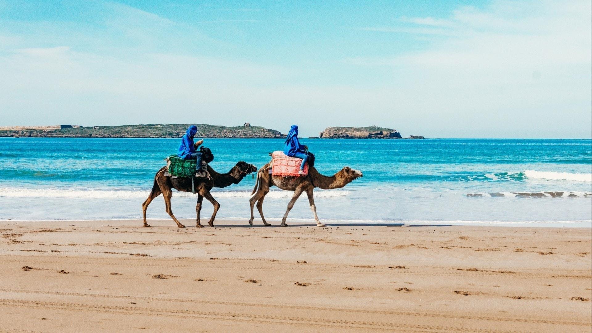 Turistas em camelos na praia
