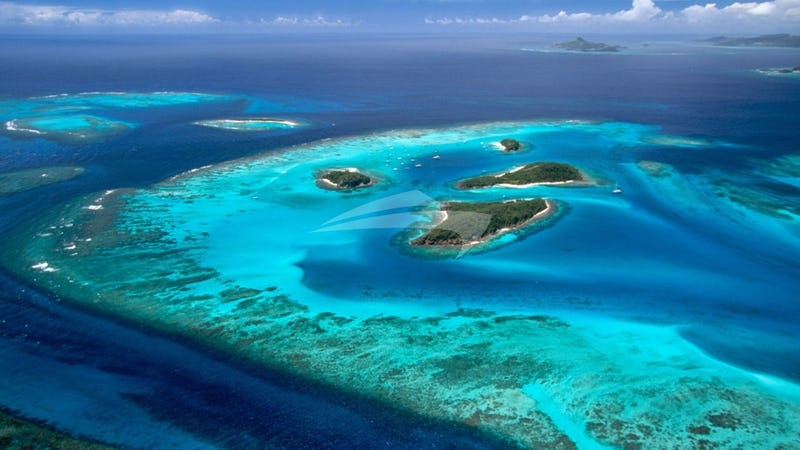 Tobago Cays National Park - a favourite