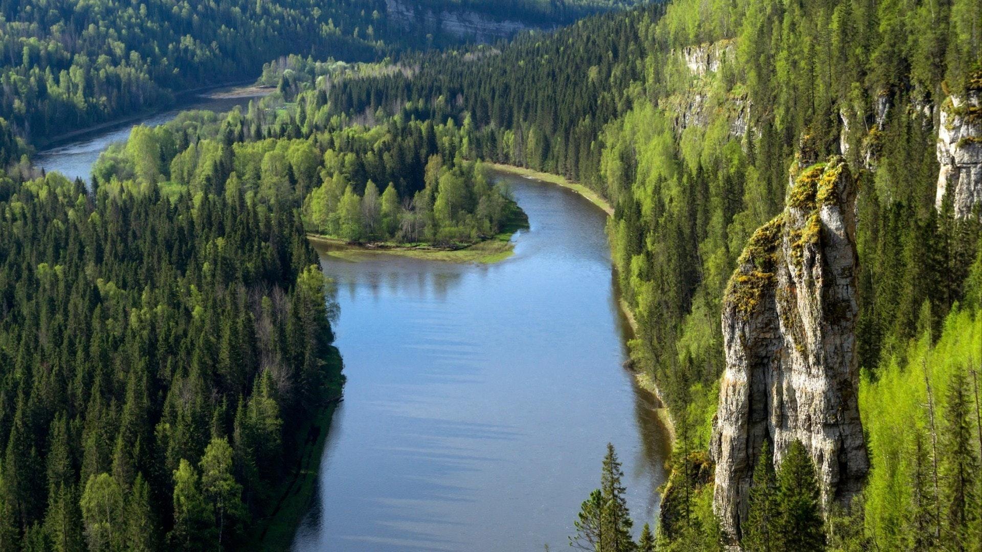 Canyon arborizado do rio norte com rochas, uma vista de cima