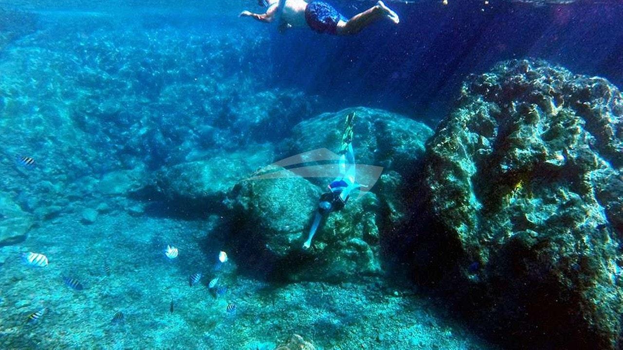 Descubra o que está debaixo do mar