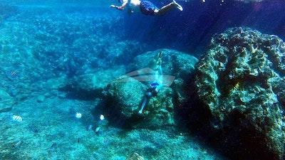Откройте для себя, что под морем