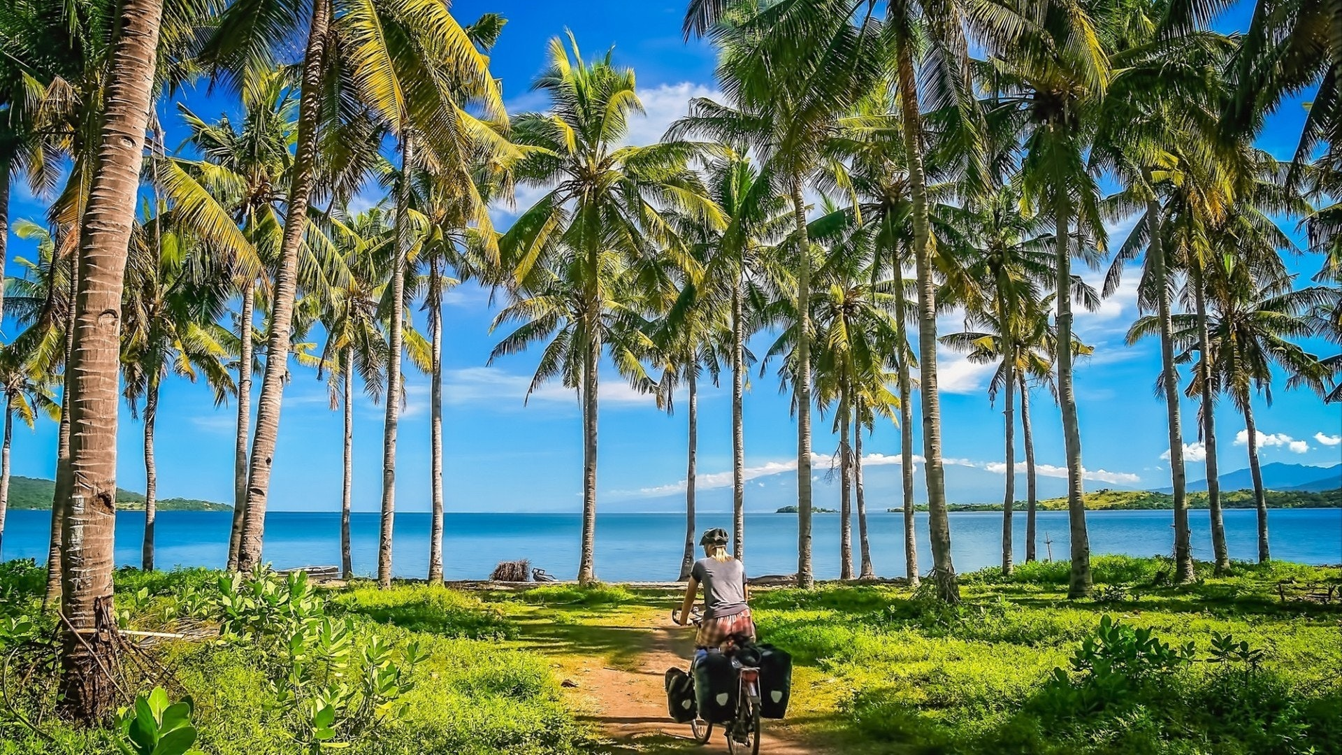 Lonely cyclist traveling through indonesian jungle in Sumbawa island in Indonesia in Asia