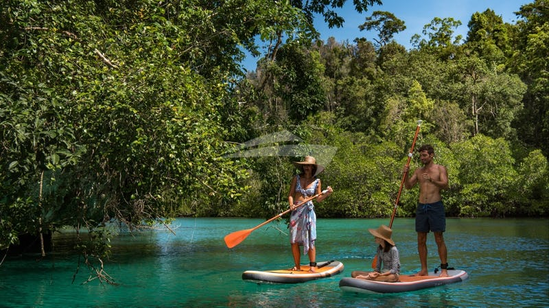 SEQUOIA :: PADDLE BOARDING