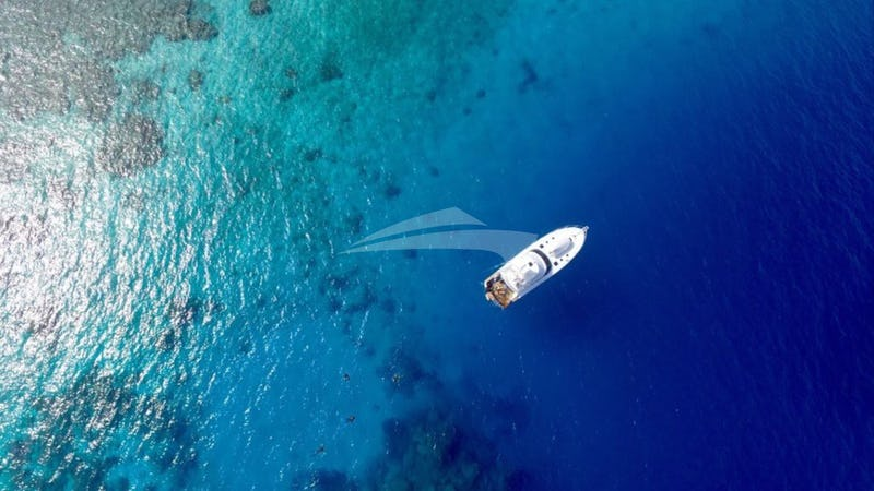 BELUGA :: Aerial View of the chaseboat