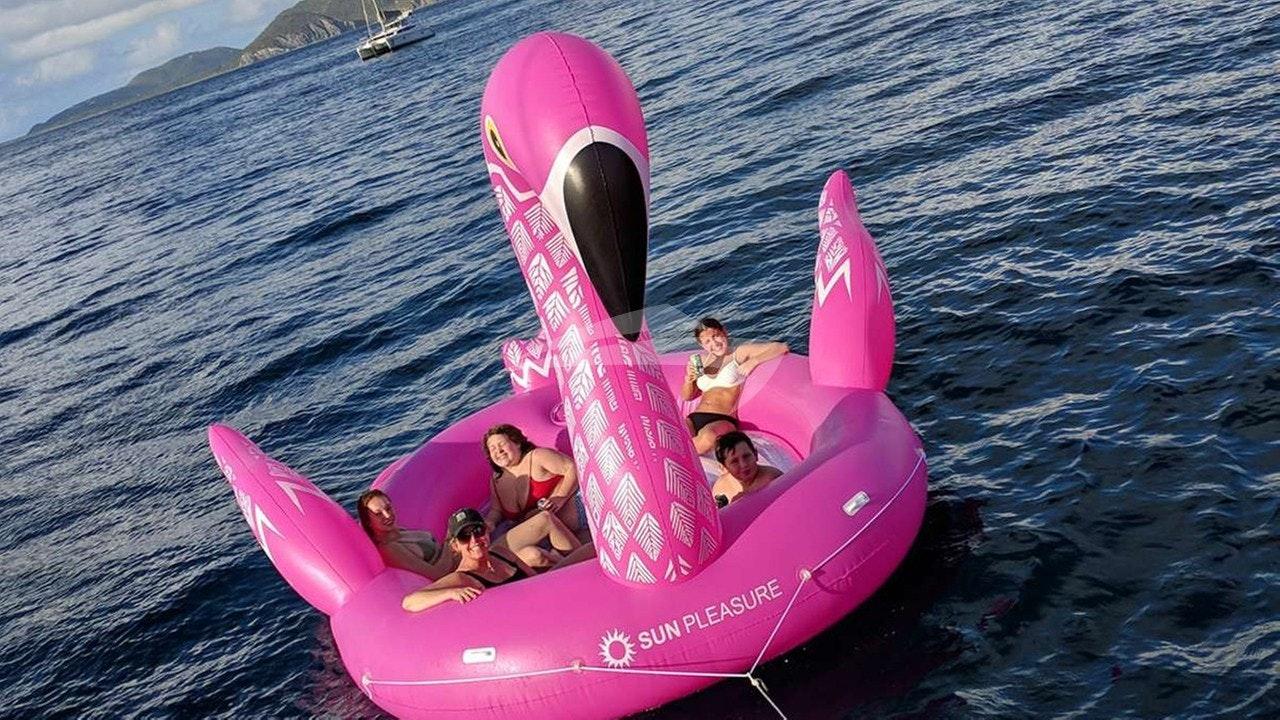 Risos, o flamingo gigante!